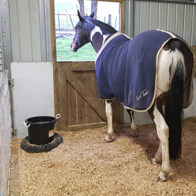Stable Chip Animal bedding Dairy Flat